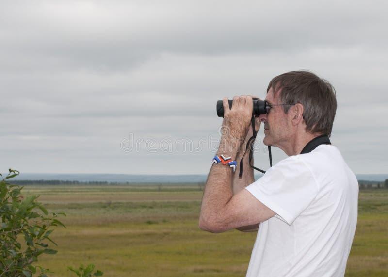 birdwatcher стоковые фото
