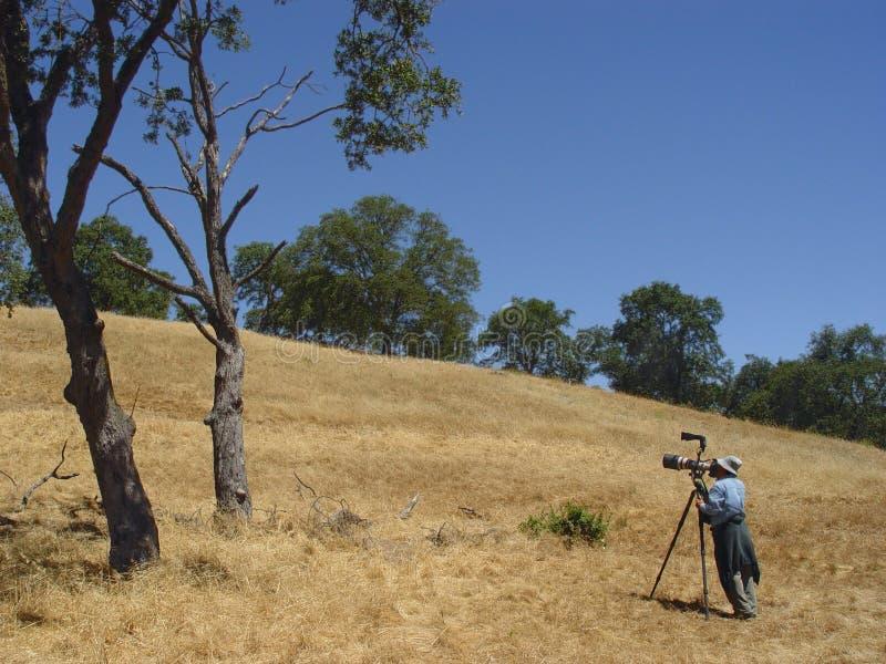 Birdwatcher, das Fotos macht