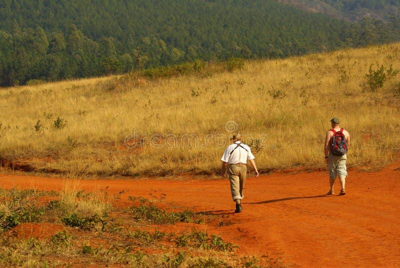 Birdwatchers che trekking in Sudafrica immagine stock libera da diritti