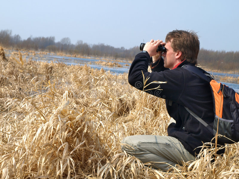 birdwatching royaltyfri fotografi