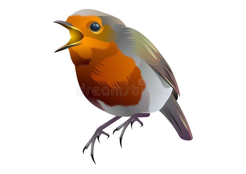 Birdy fotografia de stock royalty free