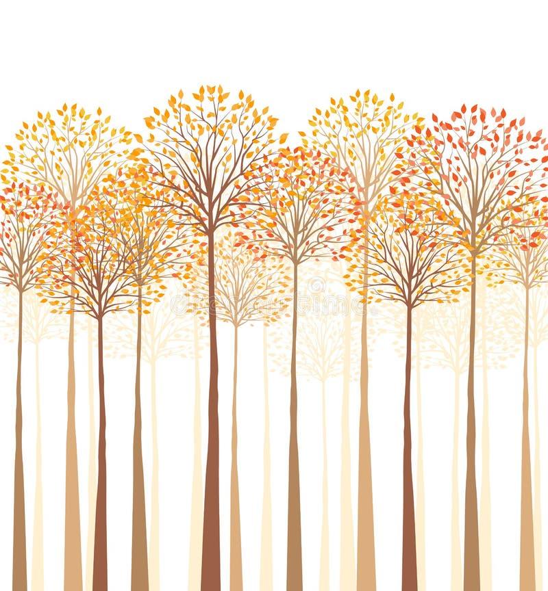 Birken mit orange Blättern vektor abbildung