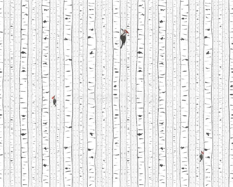 Birken- und Spechtbeschaffenheit stockbilder