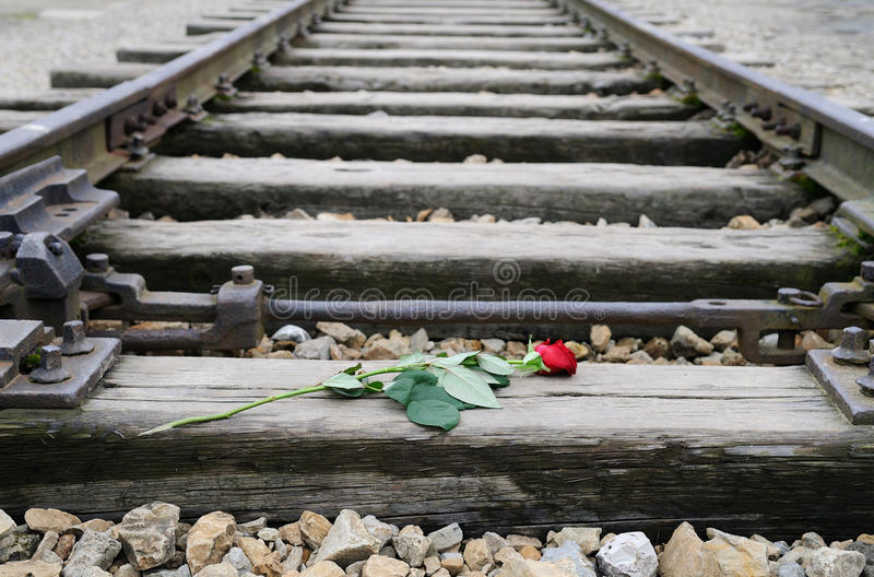 Birkenau. A red rose on the railway tracks that lead to the Nazi extermination camp of Auschwitz/Birkenau stock photos