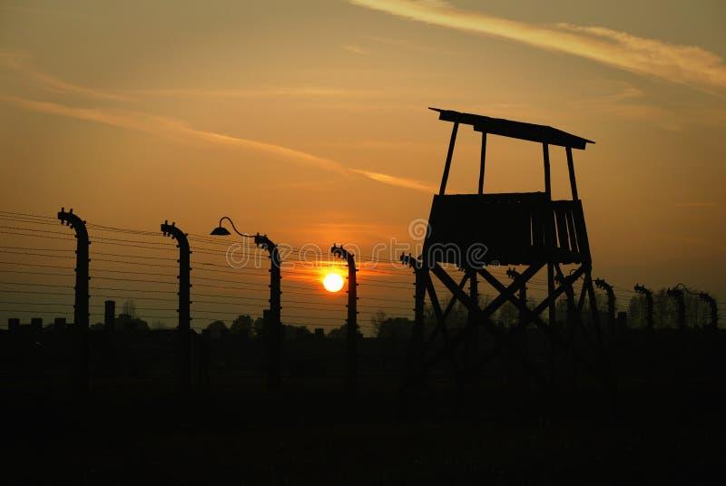 Download Birkenau Editorial Photo - Image: 21904711