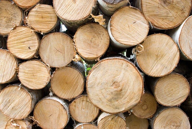 Birkenfeuerholz lizenzfreie stockfotografie
