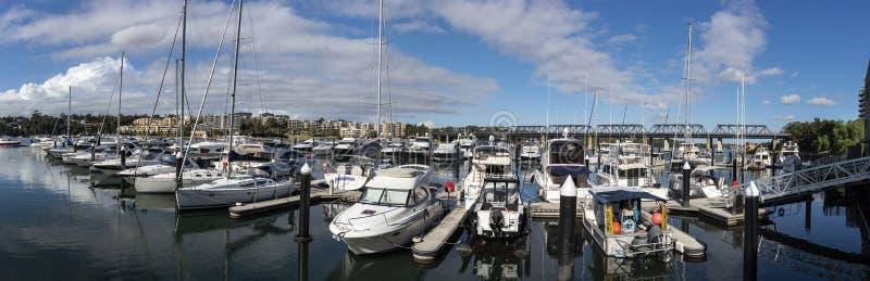 Birkenhead Marina Panorama, Sydney Australia immagine stock libera da diritti