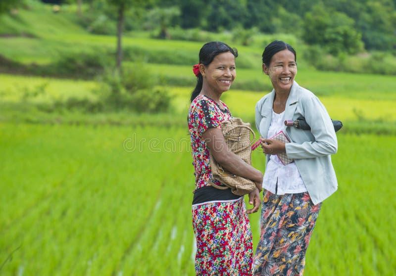 Birmańscy rolnicy przy ryżu polem obrazy royalty free