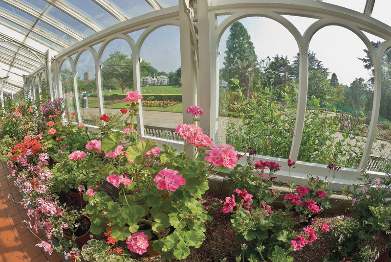 Birmingham-botanische Gärten Lizenzfreies Stockbild