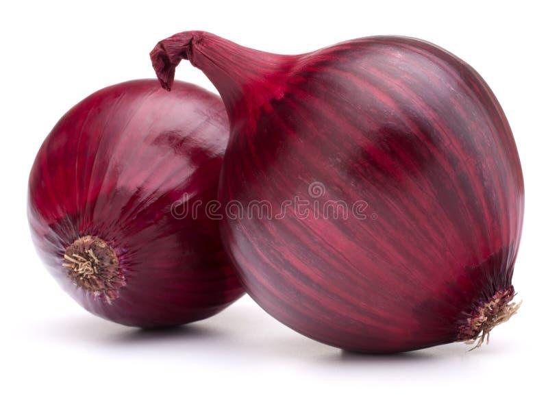 Birne der roten Zwiebel stockfoto