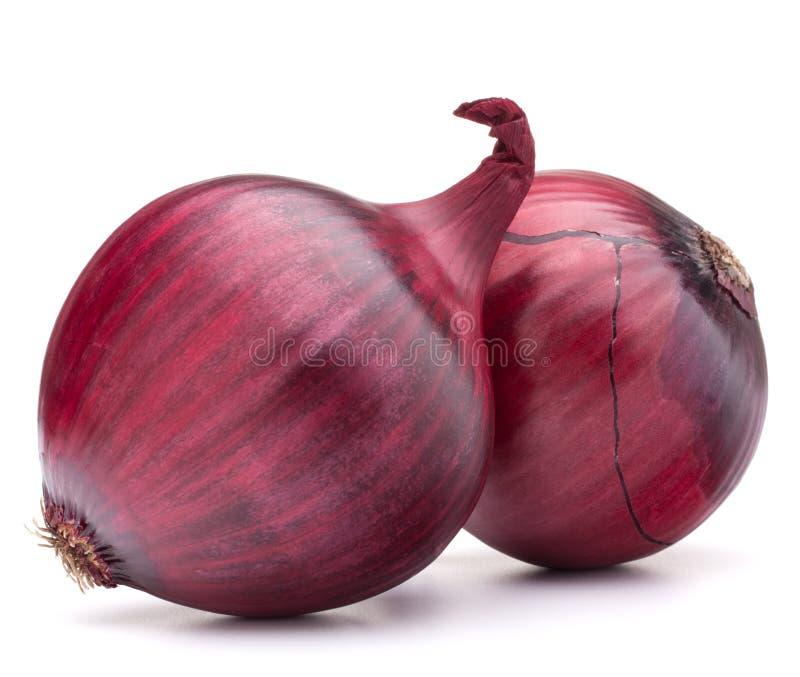 Birne der roten Zwiebel lizenzfreies stockfoto