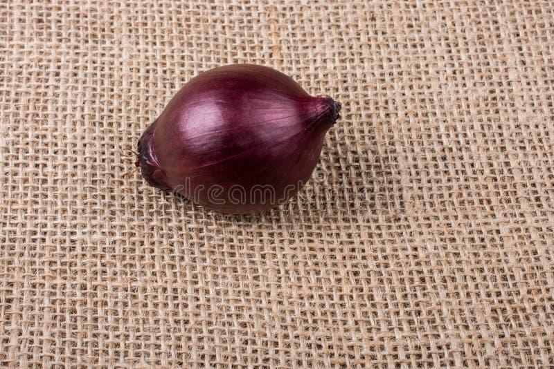 Birne der roten Zwiebel auf Segeltuch lizenzfreie stockfotos
