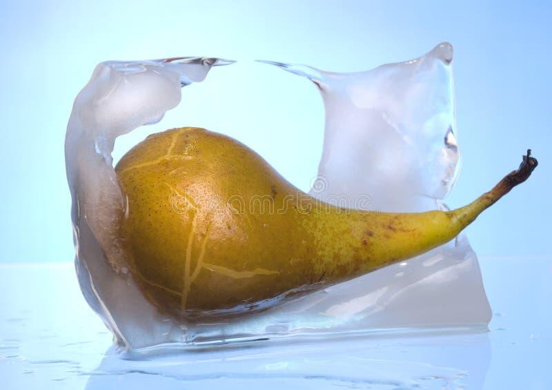 Birne, die aus Eis heraus schmilzt lizenzfreie stockfotografie