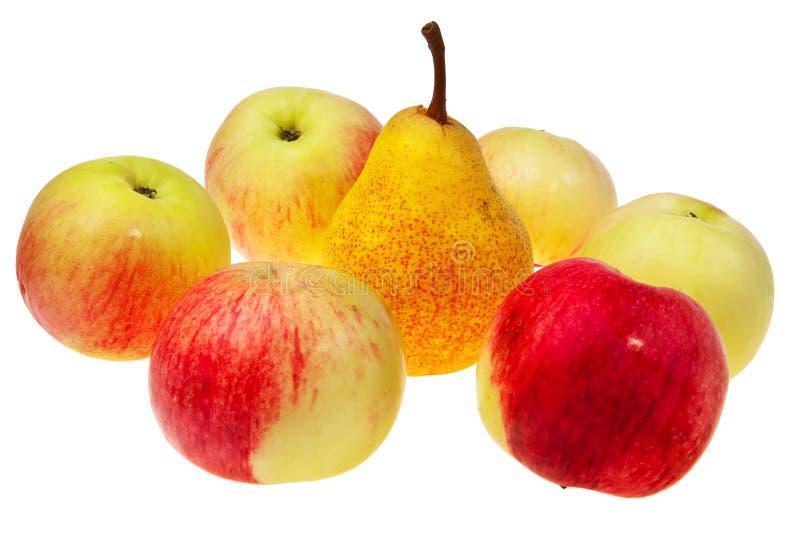 Birne und Äpfel. stockbilder