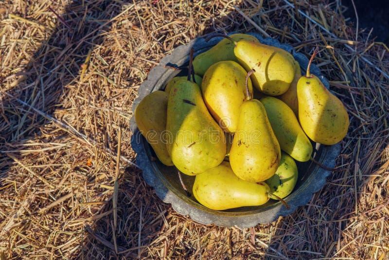 Birnen in einer kupfernen Schüssel lizenzfreies stockfoto