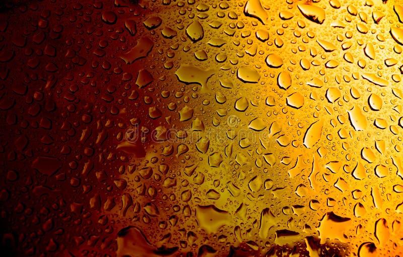 Birra ambrata immagini stock