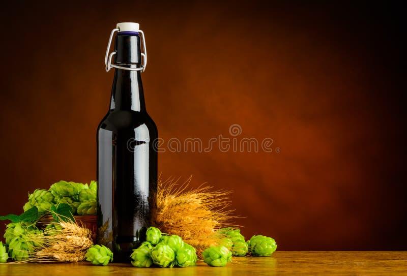 Birra che fa con il luppolo ed il grano sullo spazio della copia fotografia stock libera da diritti