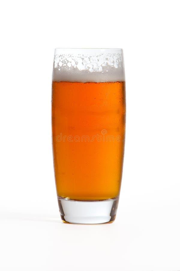Birra chiara dell'India immagine stock