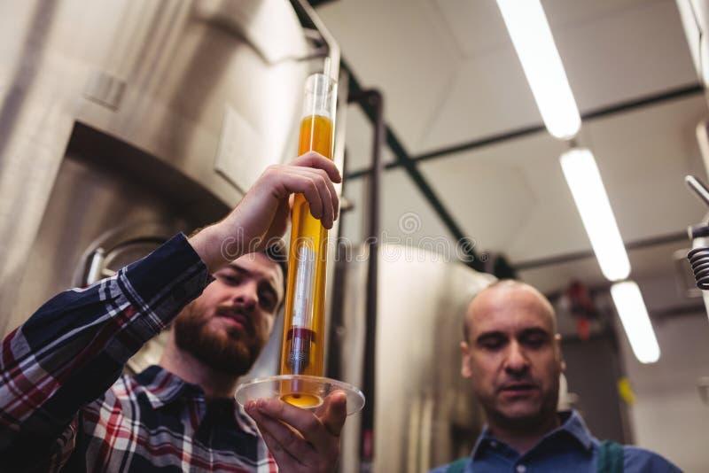 Birra d'esame del produttore in tubo alla fabbrica di birra fotografia stock libera da diritti