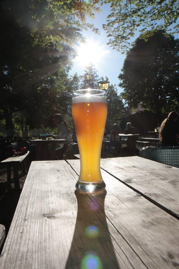 Birra del frumento fotografie stock libere da diritti