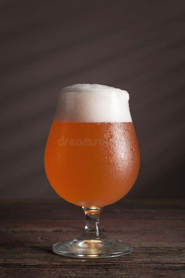 Birra del pompelmo fotografia stock