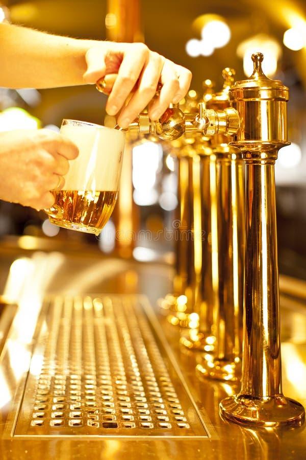 Birra dell'oro fotografia stock libera da diritti
