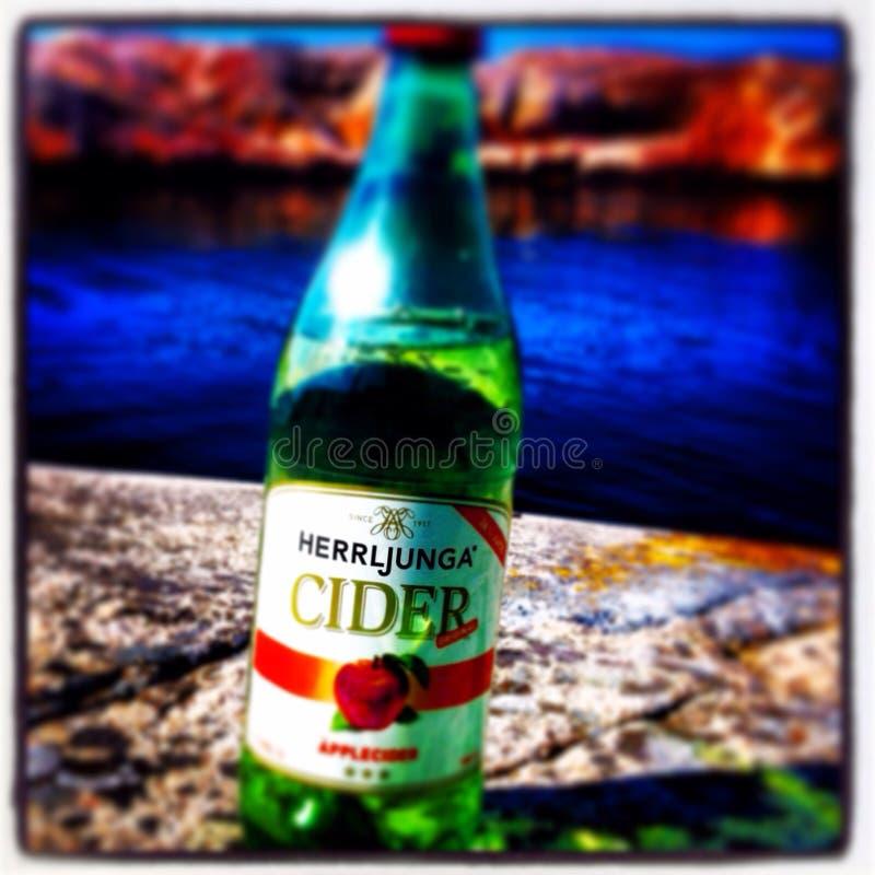 Birra di estate immagine stock