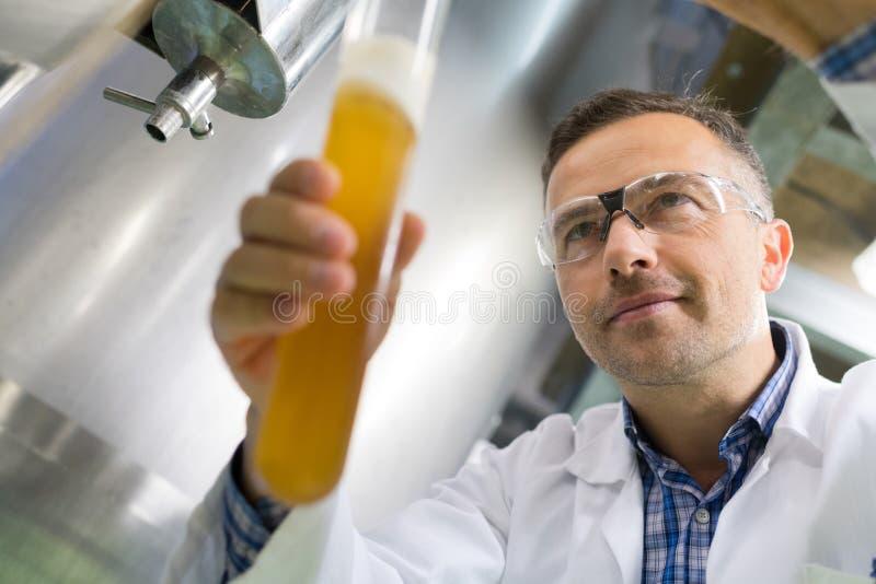 Birra di prova del fabbricante di birra del primo piano alla fabbrica di birra fotografia stock