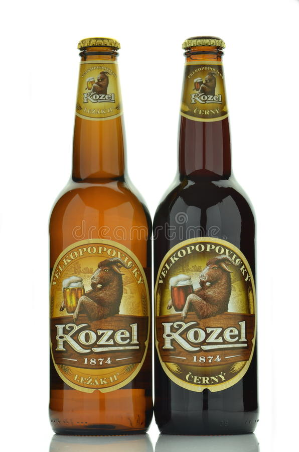 Birra di Velkopopovicky Kozel isolata su fondo bianco fotografia stock
