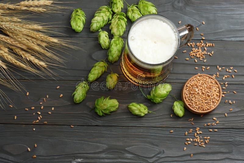 Birra di vetro con i coni di luppolo e le orecchie del grano su fondo di legno scuro Concetto della fabbrica di birra della birra fotografie stock libere da diritti