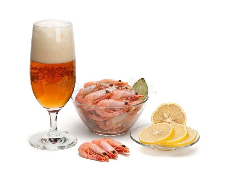 Birra e gamberetti bolliti fotografia stock