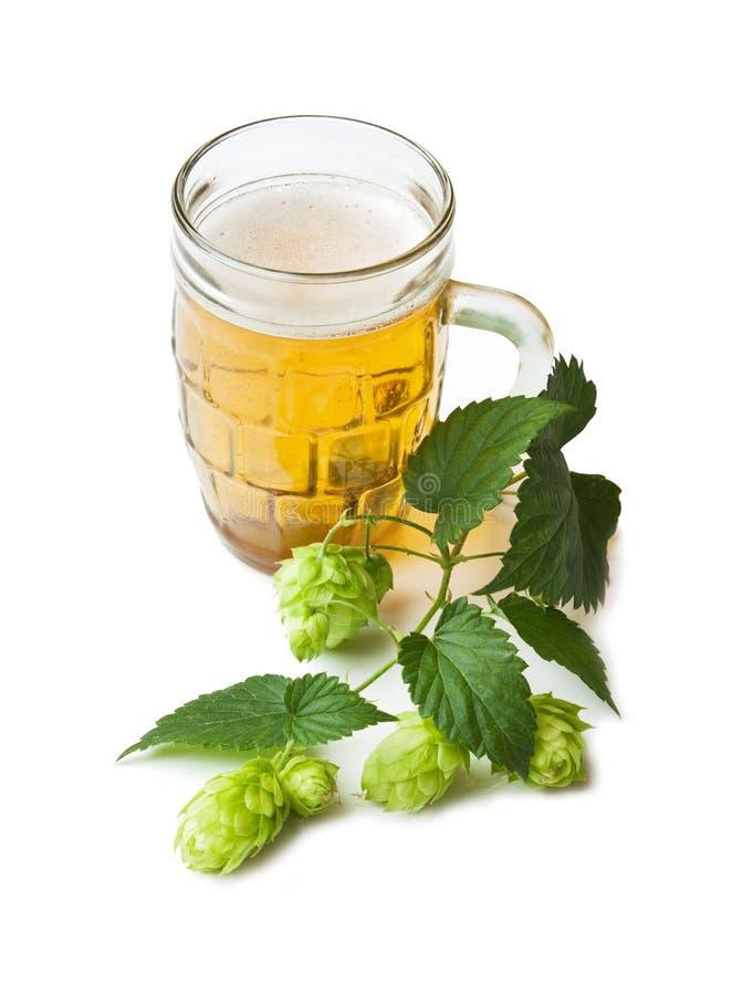 Birra e luppolo immagini stock libere da diritti