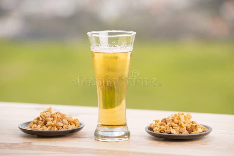 Birra ed arachidi immagini stock libere da diritti