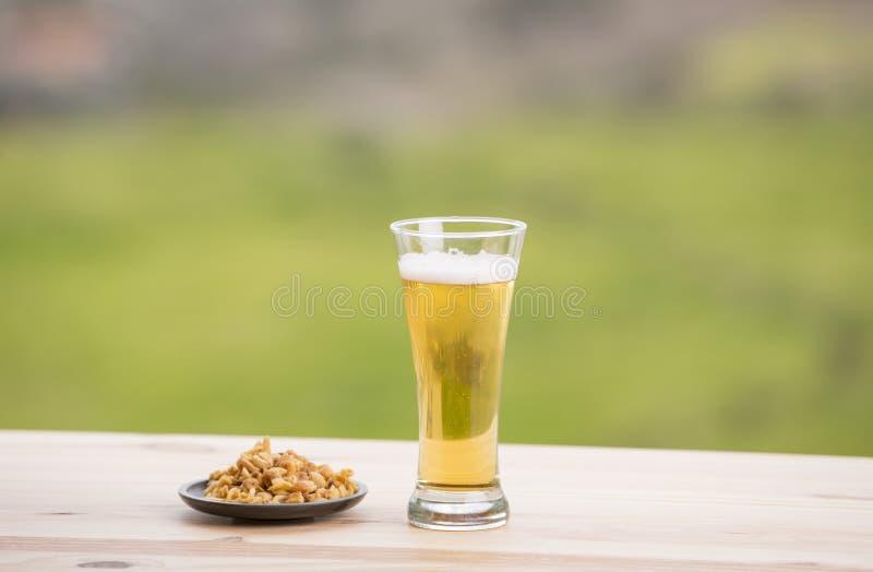 Birra ed arachidi fotografia stock