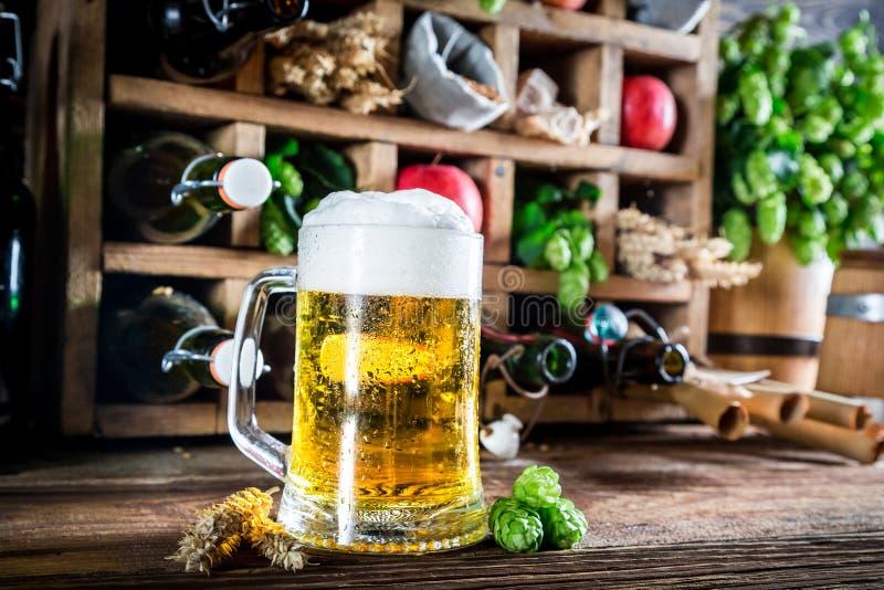 Birra ed ingredienti freschi del sidro immagini stock libere da diritti