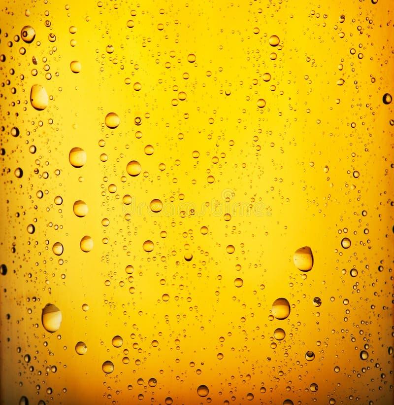 Birra fredda fotografie stock libere da diritti