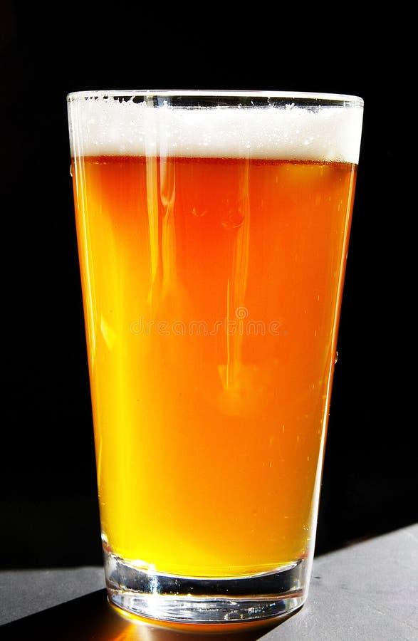 Birra fredda immagini stock libere da diritti