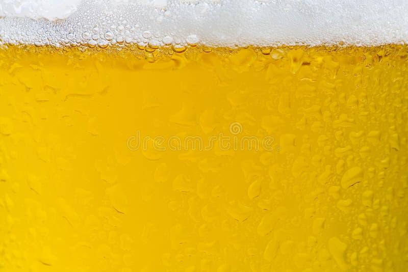Birra fredda e saporita fresca immagine stock