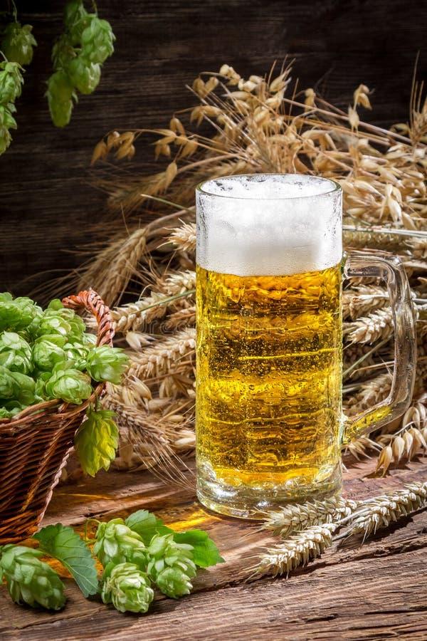 Birra fredda fresca con una grande schiuma immagini stock
