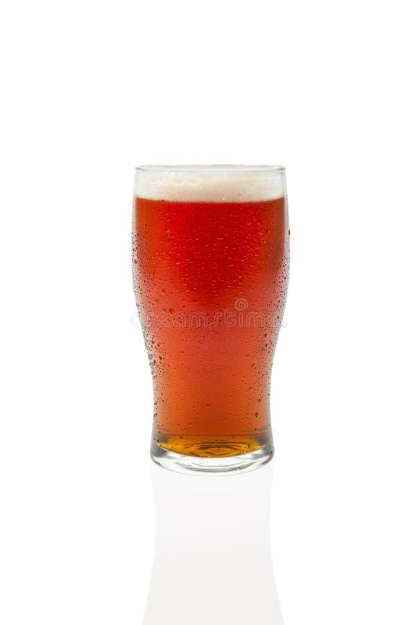 Birra inglese ambrata in vetro della pinta fotografia stock