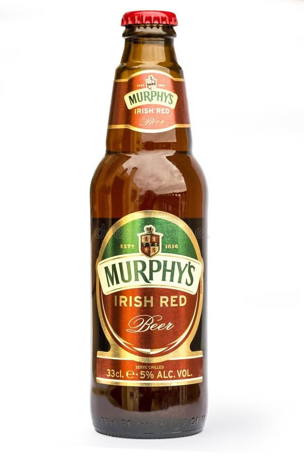 Birra rossa irlandese isolata su bianco fotografia stock