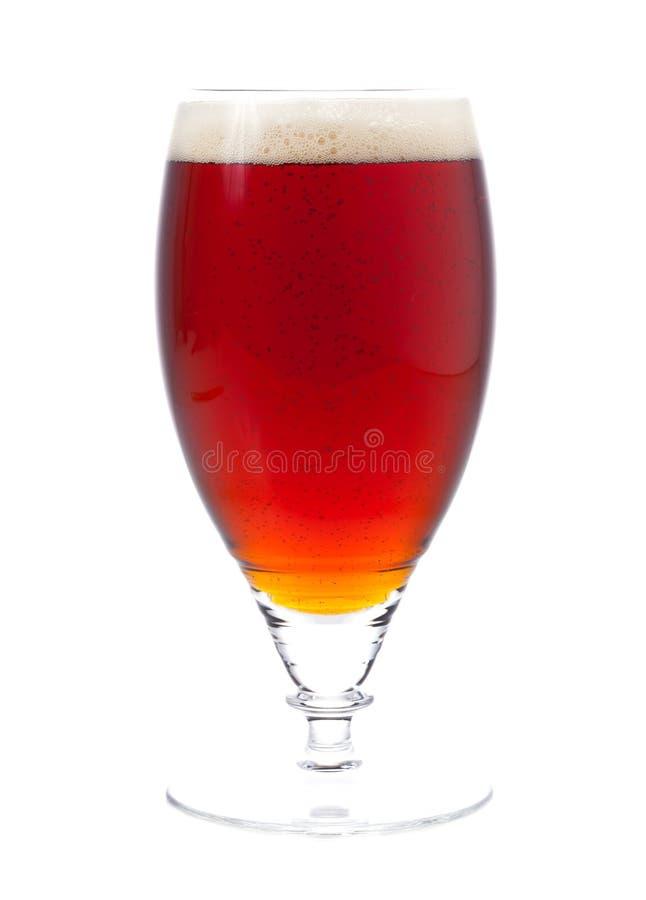 Birra scura fotografia stock libera da diritti