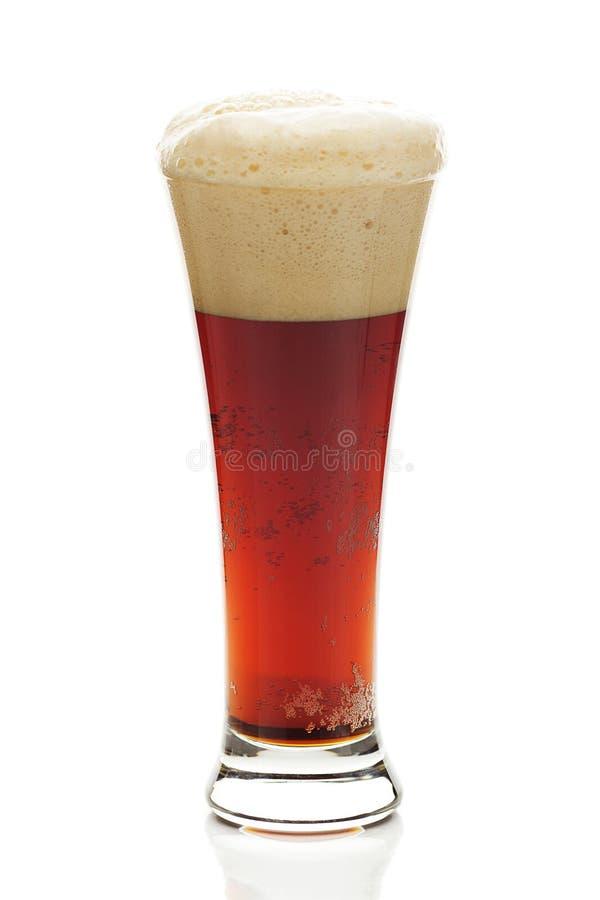 Birra scura con la schiuma in un vetro alto fotografia stock