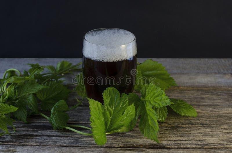 Birra scura in un vetro con un ramo del luppolo Giorno della birra immagini stock