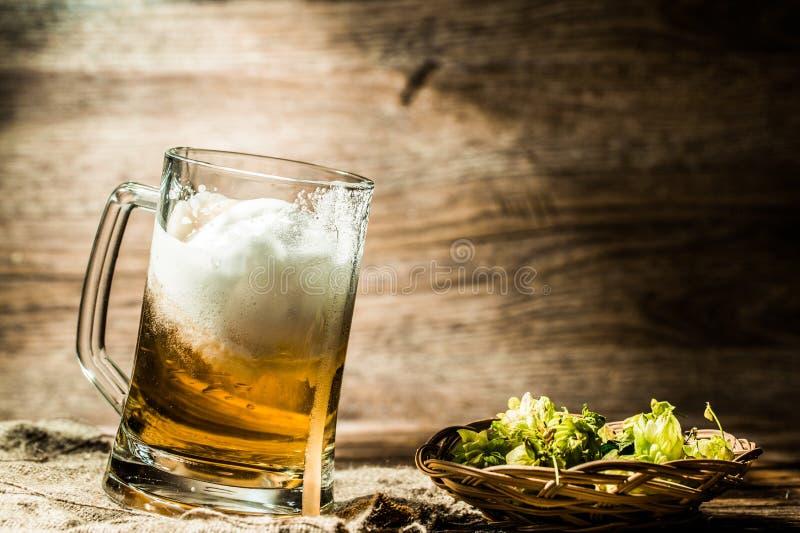 Birra spumosa che sta vicino al luppolo fotografia stock libera da diritti