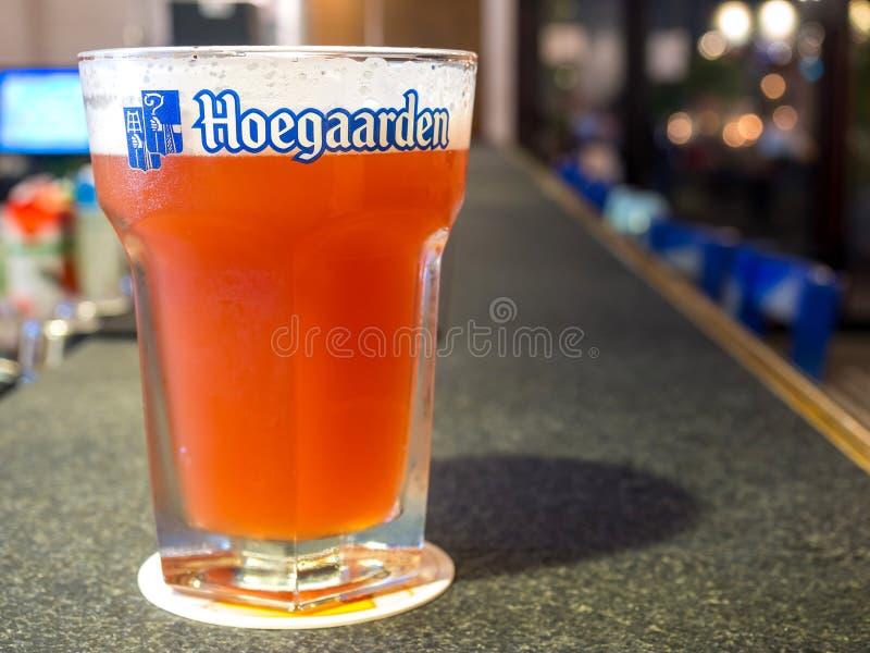 Birra su grande vetro in pub fotografie stock