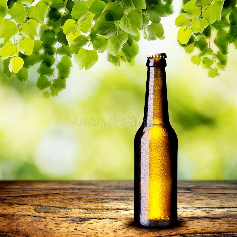 Birra sulla Tabella di legno fotografia stock