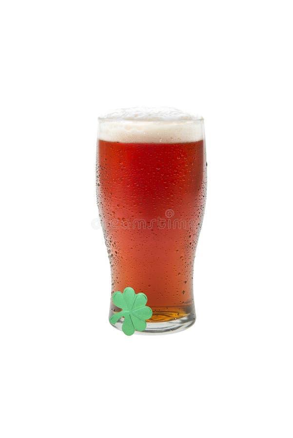 Birra in un vetro della pinta con il trifoglio fotografia stock libera da diritti