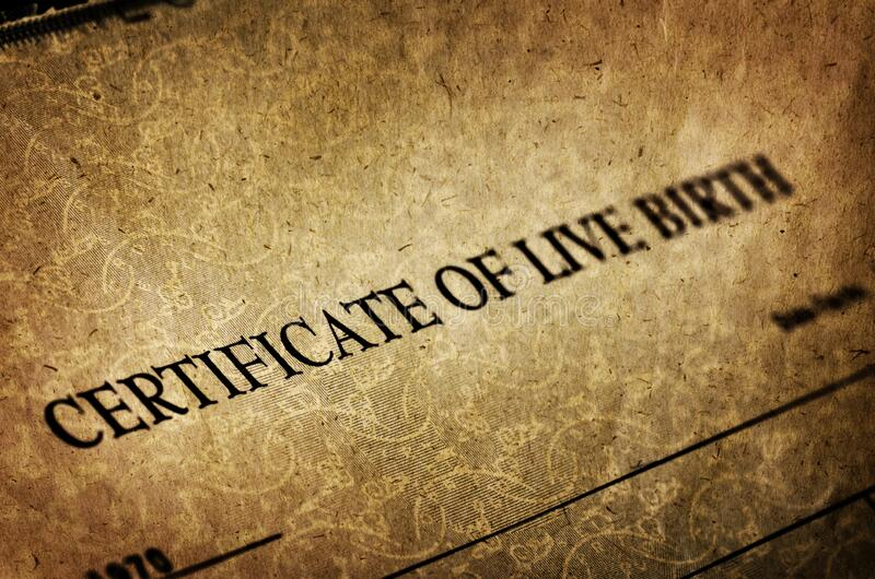 Birth Certificate for Live Baby Born stock images