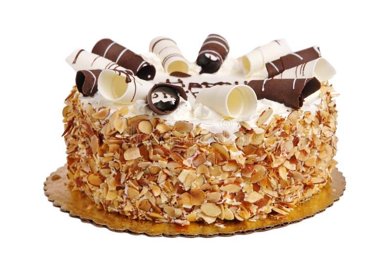 Birthday Cake. Isolated on white background stock image